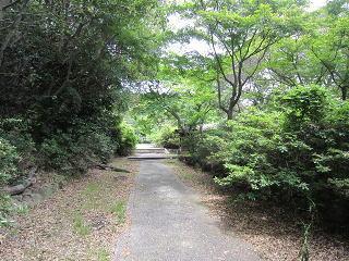 0519-61-kousanji-8.jpg