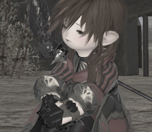 FF14_201402_029.png