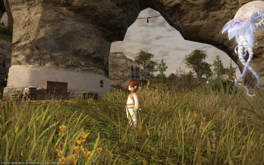 FF14_201402_043.png