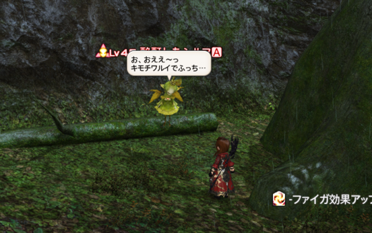 FF14_201402_068.png