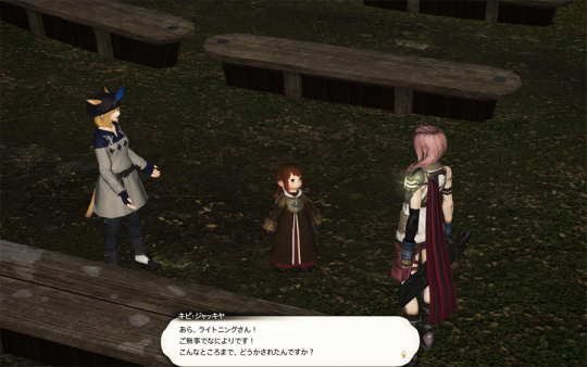 FF14_201403_054.png