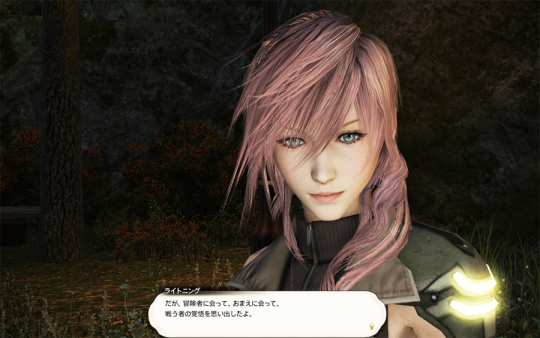 FF14_201403_058.png