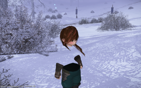 FF14_201406_002.png
