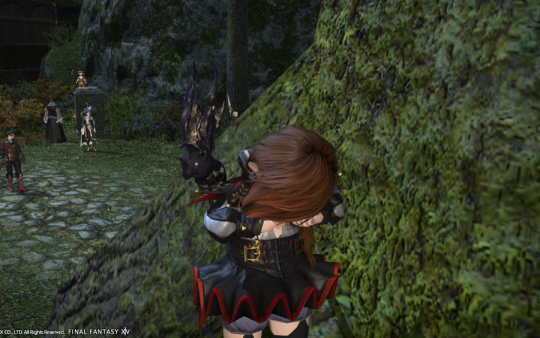 FF14_201406_049.png