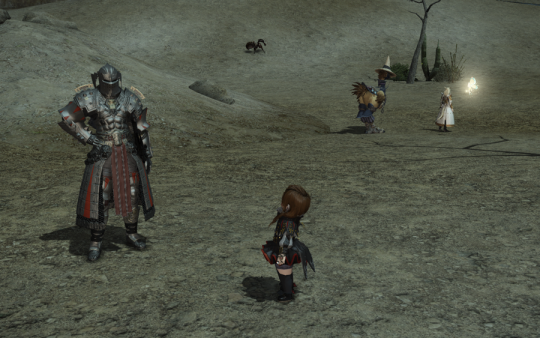 FF14_201406_054.png