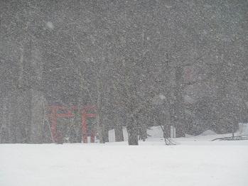 20140406 雪の三石神社