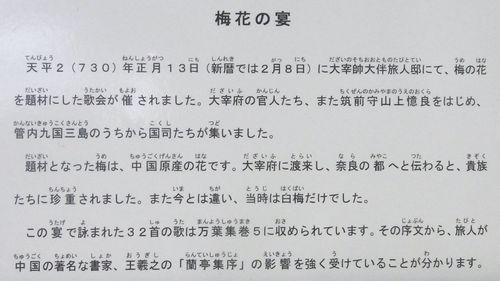 太宰府跡13