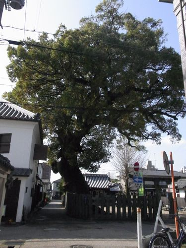 長崎街道23