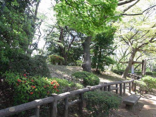 多摩川台古墳群4