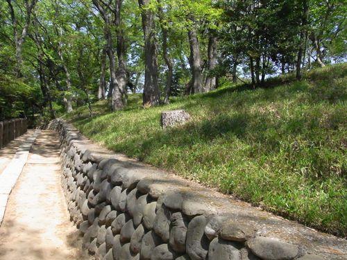多摩川台古墳群8