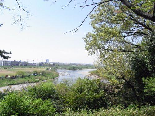 多摩川台古墳群9