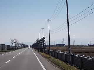 DSCF1381.jpg