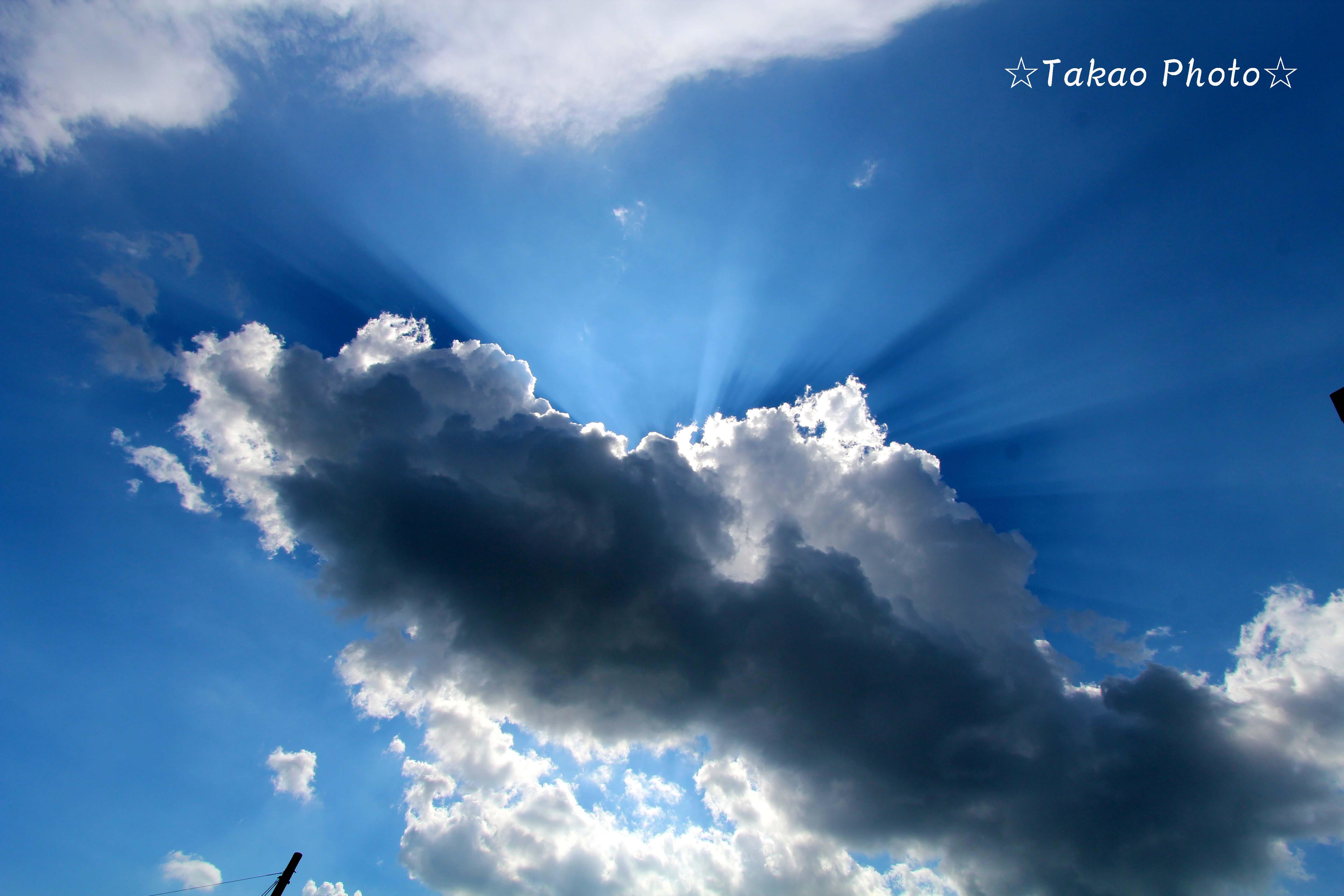 2014_0913_132936-IMG_0124のコピー