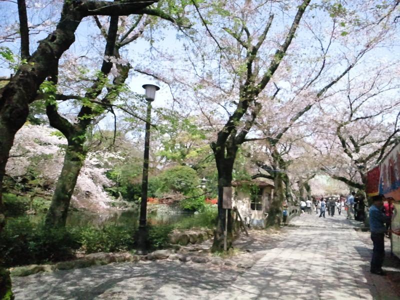 クリエイター K・Takao のブログ-2010041011000000.jpg