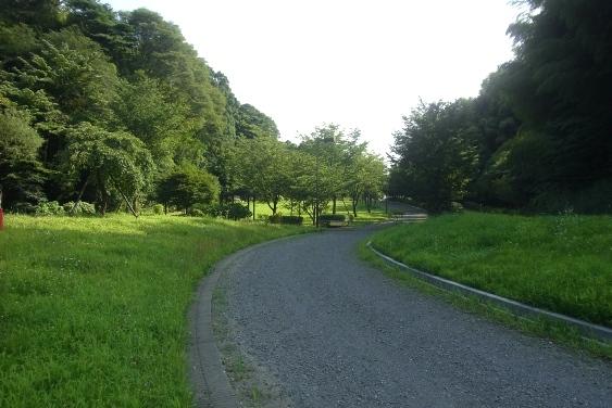 西の谷公園
