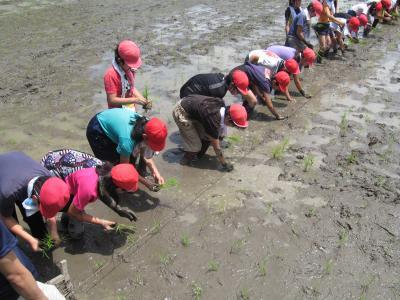 学童農園④