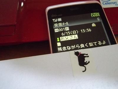 IMGP8838.jpg