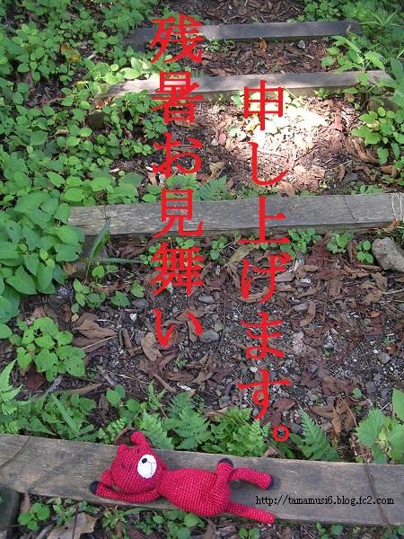 DSCN0673aa.jpg