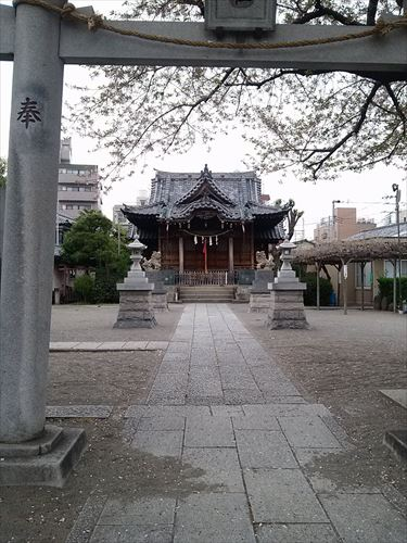 gyouza007_R.jpg