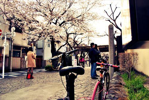 jojosuma008_R_2014032922052656b.jpg