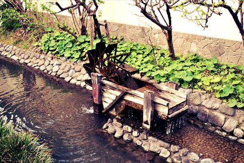 jojosuma009_R_20140329220528dd5.jpg