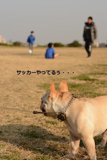 2014031724.jpg