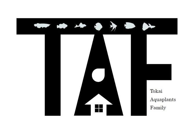 TAFロゴ1