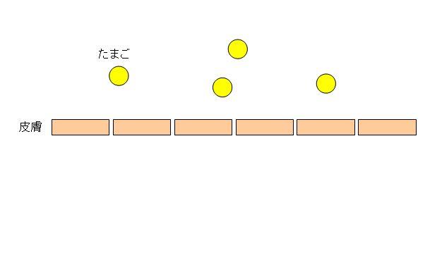 skin1111.jpg