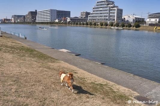 戸田公園 074