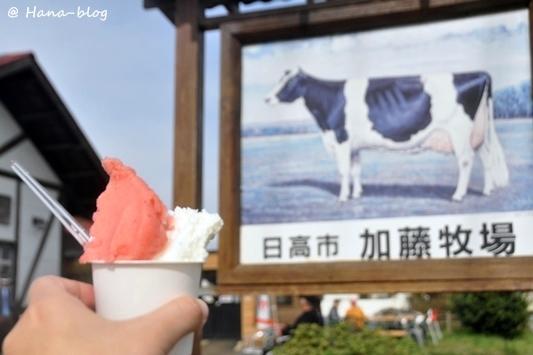 巾着田桜 236