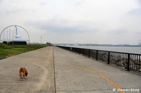 若洲海浜公園 024