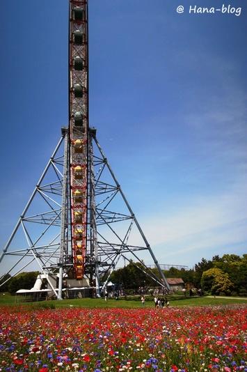葛西臨海公園 172