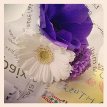 flower201403019.jpg