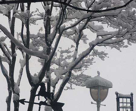 午後四時の雪景色