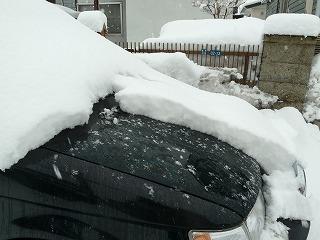 2014年3月5日雪