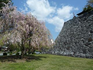 2014年5月盛岡城跡