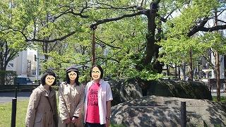 2014年5月盛岡石割桜と3人