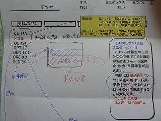 てつや血液検査結果2014年3月