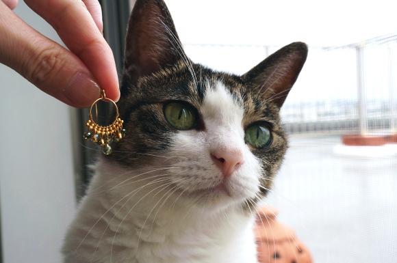 なんちゃって黄金の耳飾り