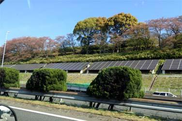 太陽光の塔 万博記念公園