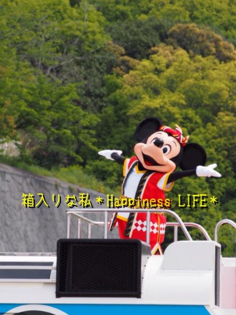 IMG_3686.jpg