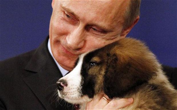オバマ対プーチン(子犬とプーチン)image
