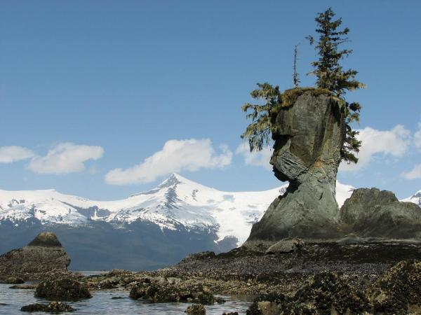 とある自然の造形(Natural Rock Face in Alaska)