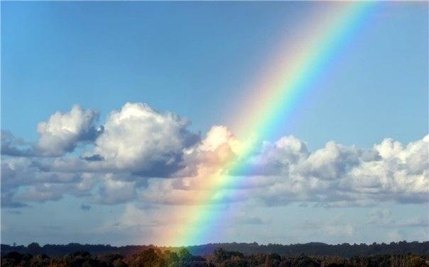 とあるどこかの虹image