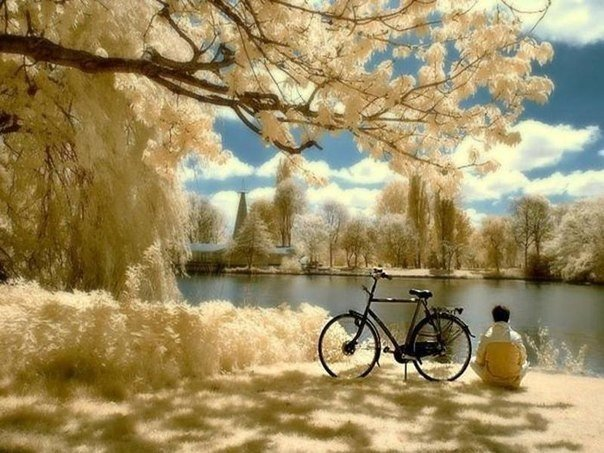 とある非日常な(少年と自転車)image