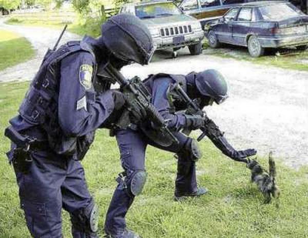 とある非日常な情景(兵士とネコ)image