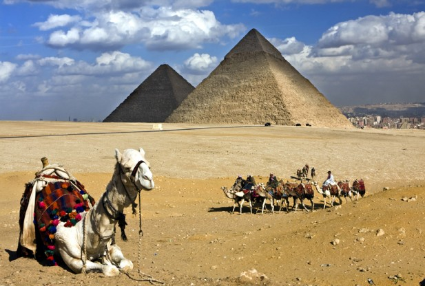 ピラミッド(駱駝さんたち)image