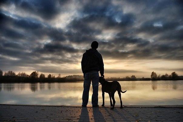 犬と一緒image