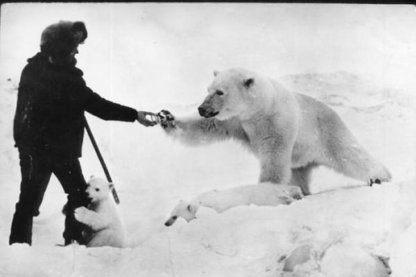 ベルリン動物園の白くまさんimage