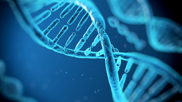 DNA(フォトイメージ)image